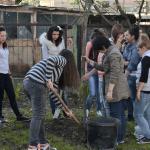 Подготовка за озеленяване