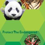 Protect the nature шаблон Иван Цветков 10а