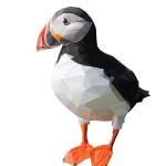 elana-10a-poligon puffin
