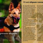цветелина цокова 11клас списание_Page_3
