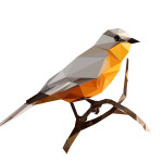 цветомир 10а птица