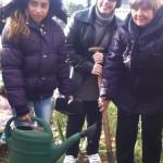 Работа по проекта - засаждане на цветя и дръвчета